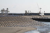 Iwate Hirono Damage / Taneichi office of Iwate Sea-Farming Association / Product promotion center / Seaside park